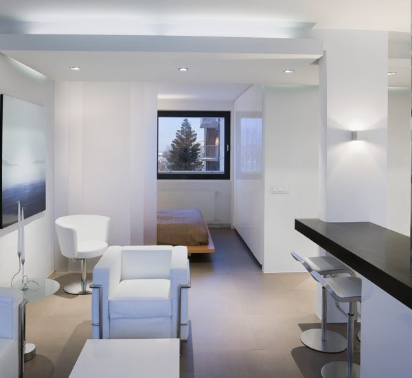 Low Price Studio Apartments: A Light-filled, Low-energy House In Vienna, Austria