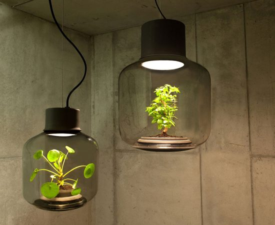 Lamp Mygdal by Nui Studio lamp-lit terrariums