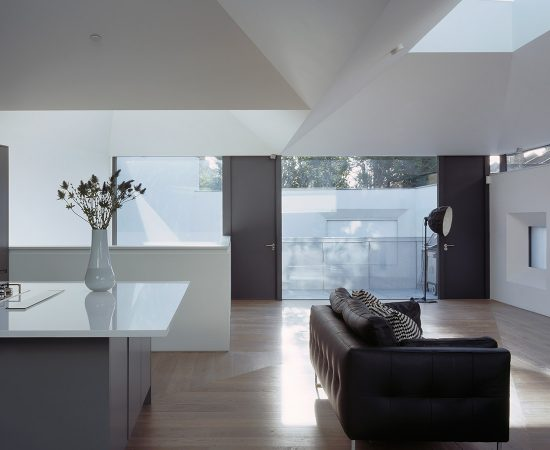 Vaulted House by vPPR Architects