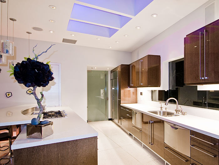 Contemporary kitchen cabinets in Hollywood bachelor pad