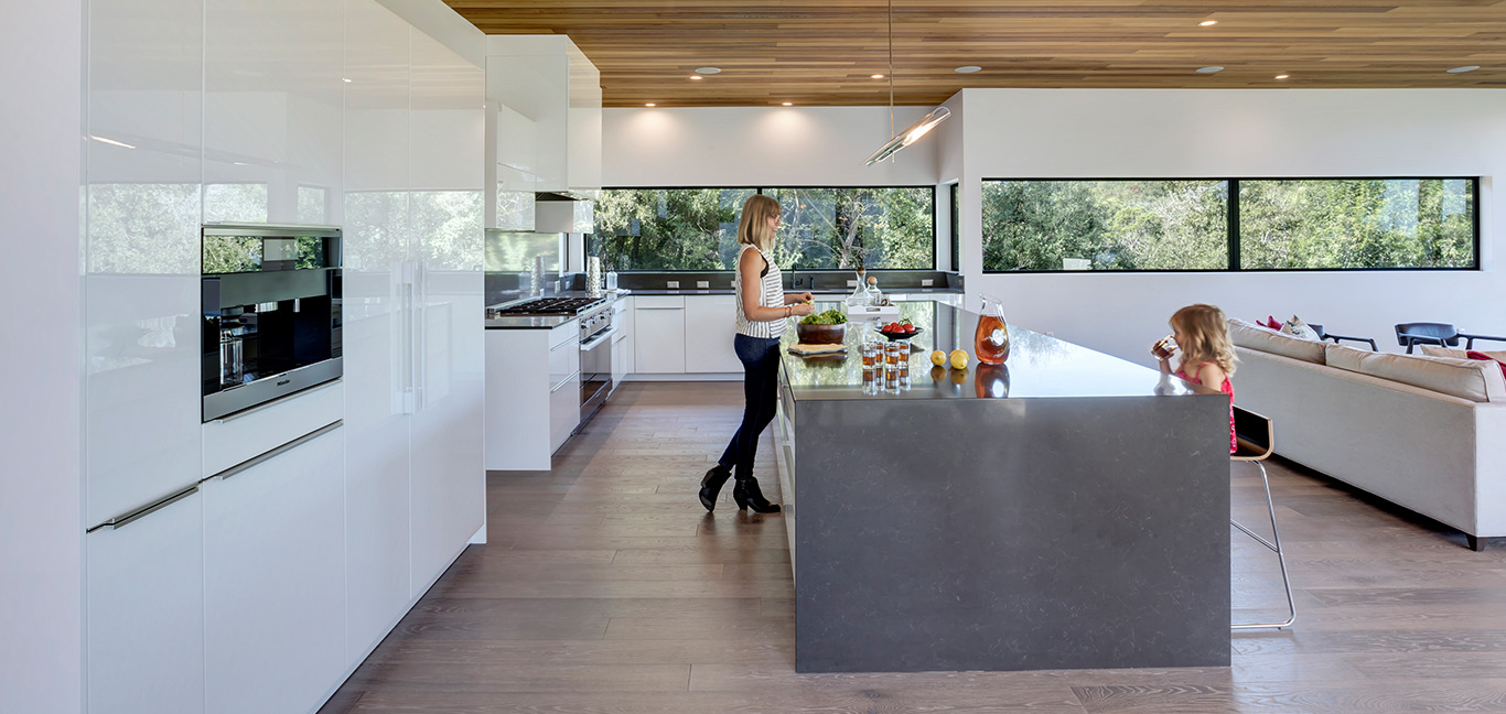 Modern kitchen design idea in dazzling house located in Austin, Texas - Bracketed Space House by Matt Fajkus Architecture