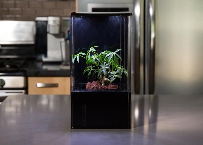 Ecoqube air desktop greenhouse smart home