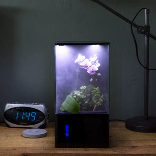 Ecoqube air greenhouse smart home