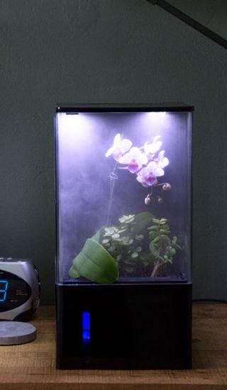 Ecoqube air greenhouse smart home