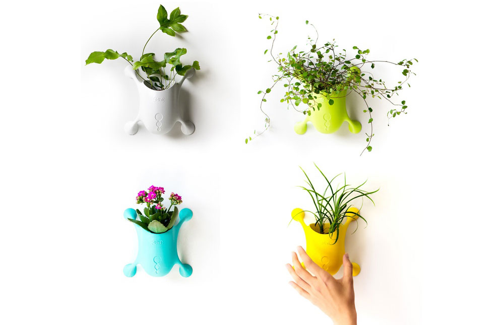 Livi cute planter suction cup