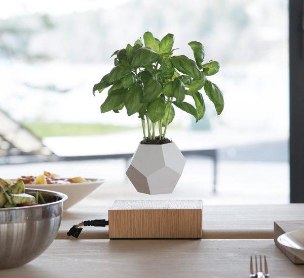 LYFE levitating planter by FLYTE