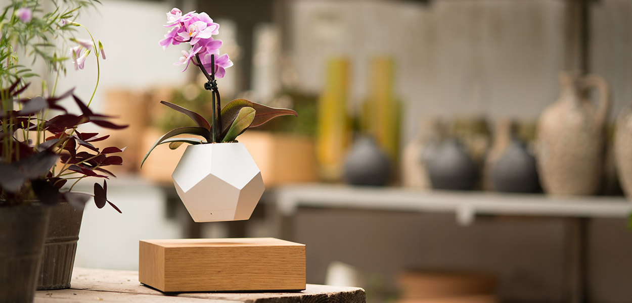 Lyfe levitating planter aims to set your plants free 10 - Pot de fleur levitation ...