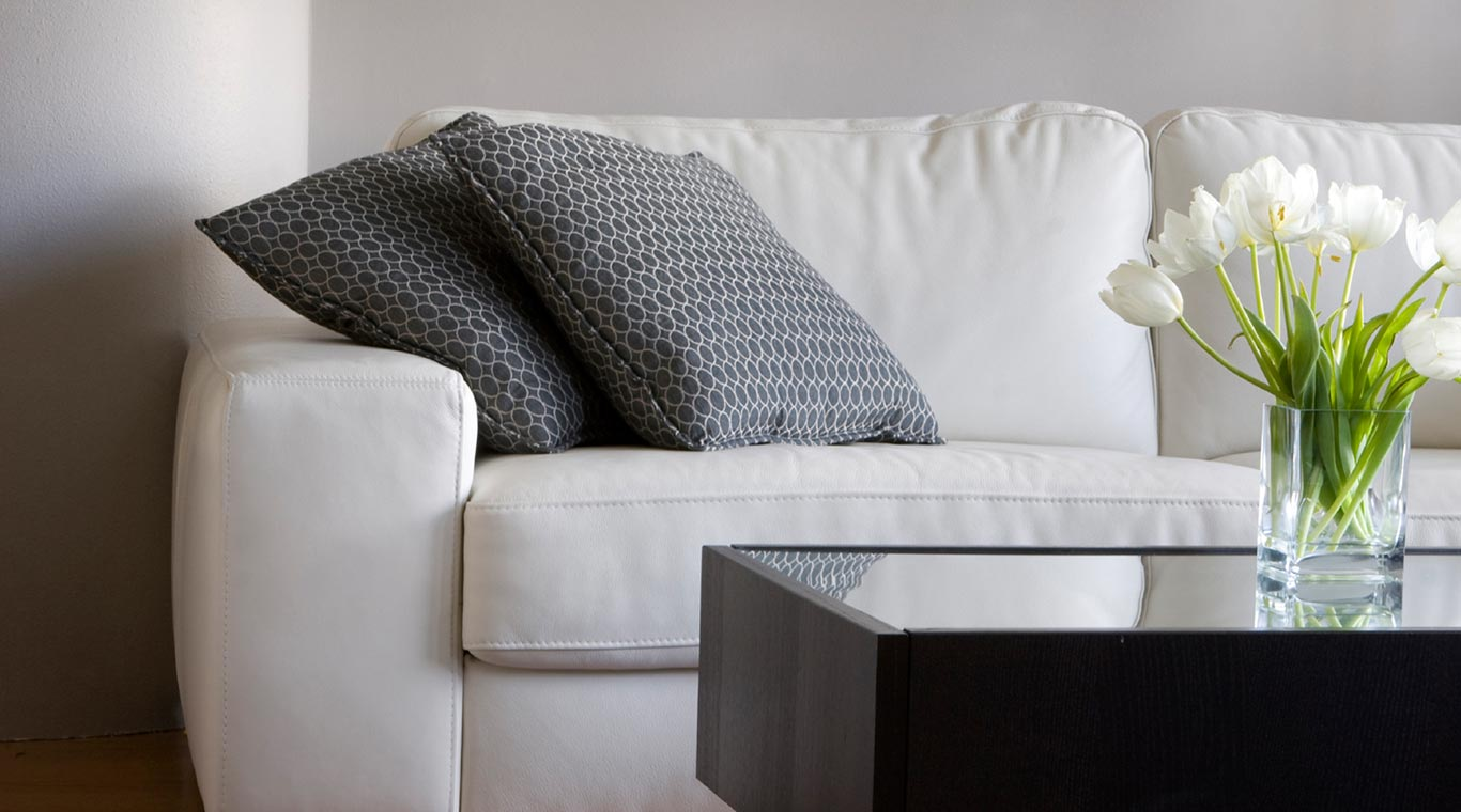 Shopping Guide 5 Black & White Throw Pillows Featured Image