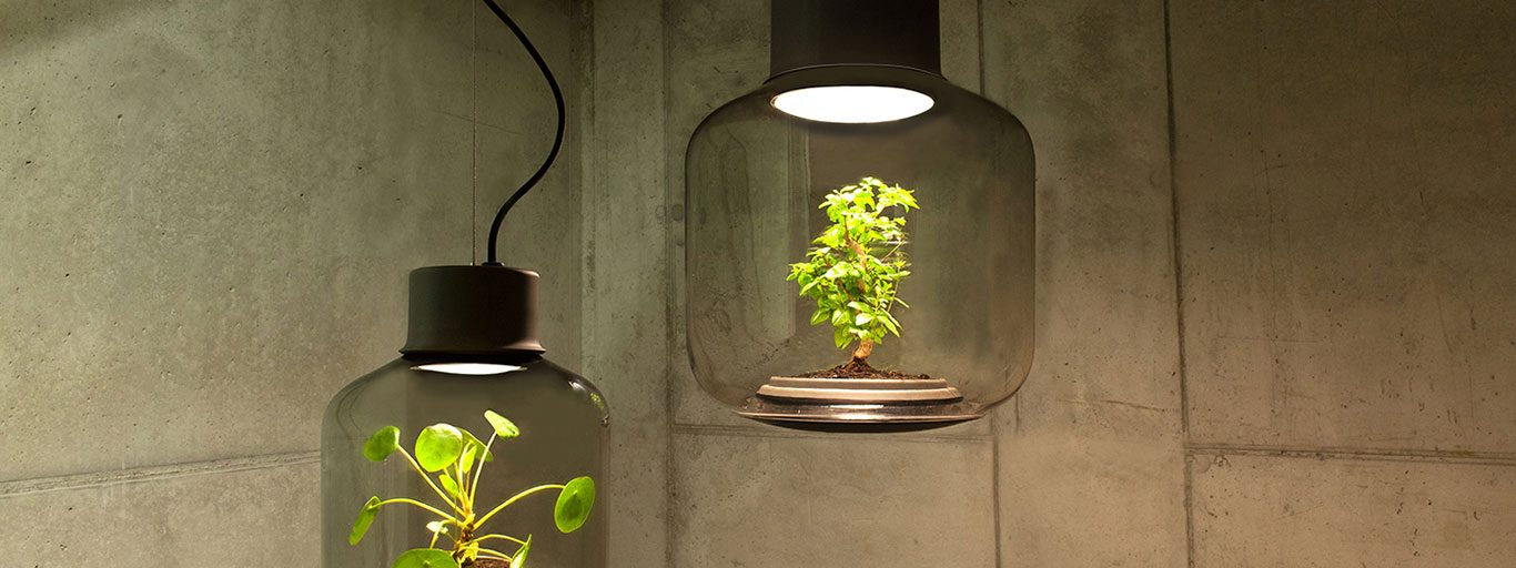 Lamp Mygdal by Nui Studio lamp-lit terrariums