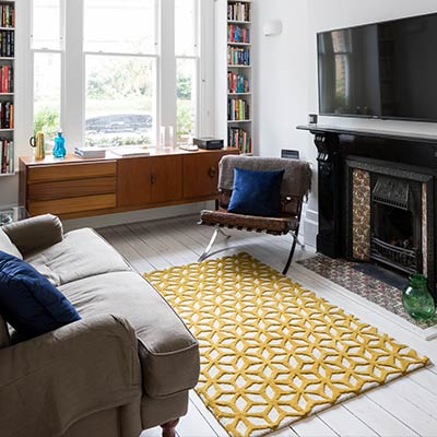 Barons Court basement extension and redesign by Rees Architects - living room design idea