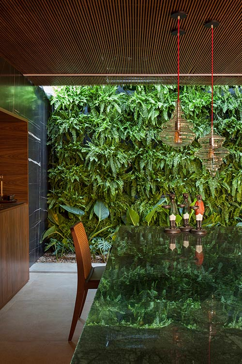 Amazing kitchen with wood cabinets and marble counter, completely open to the lush vertical garden outside - contemporary house located in Brazil
