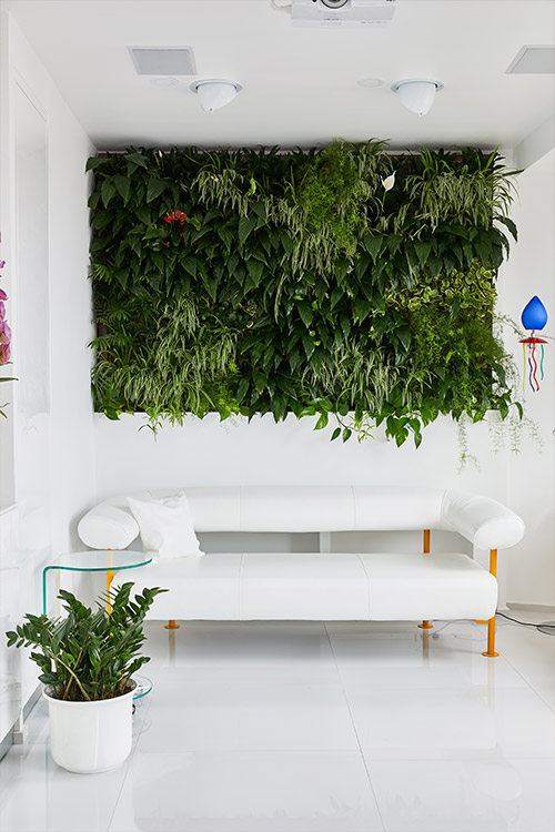 Living green wall brings nature into this renovated apartment by Margeza