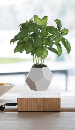 LYFE levitating planter by FLYTE