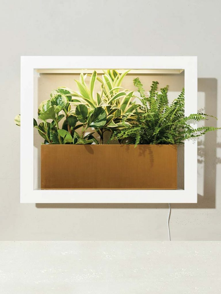 White and stylish Smart Growframe by Modern Sprout
