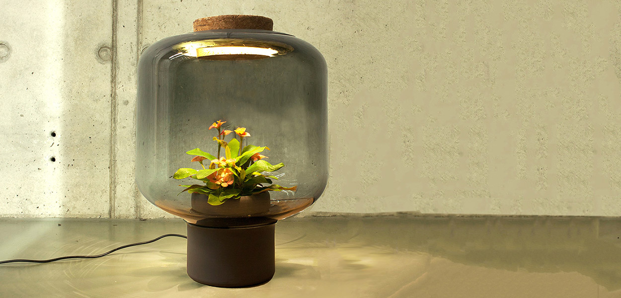 Nui studio plant lamp ingenious solution to growing plants