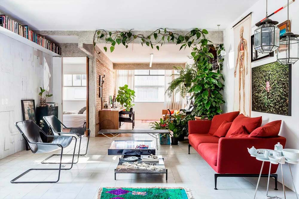 Plants can instantly change the living room decor and add color