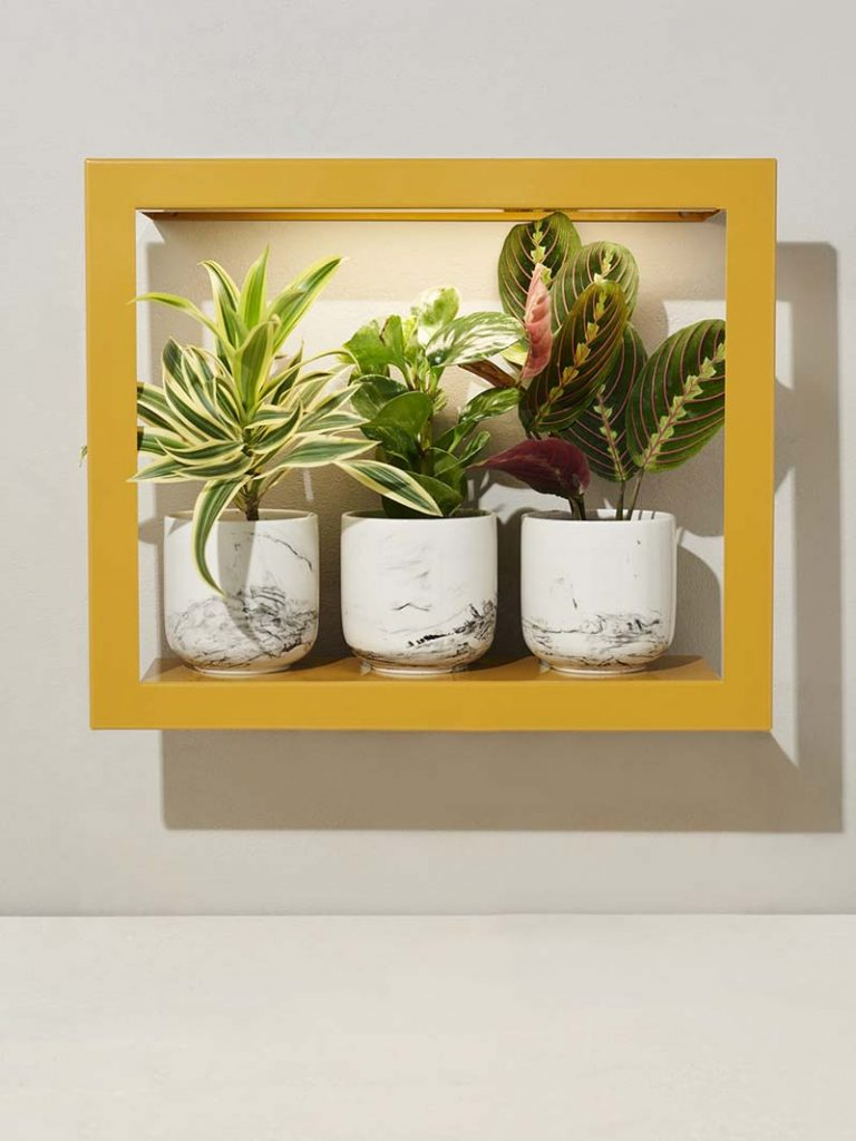 Smart Growframe by Modern Sprout